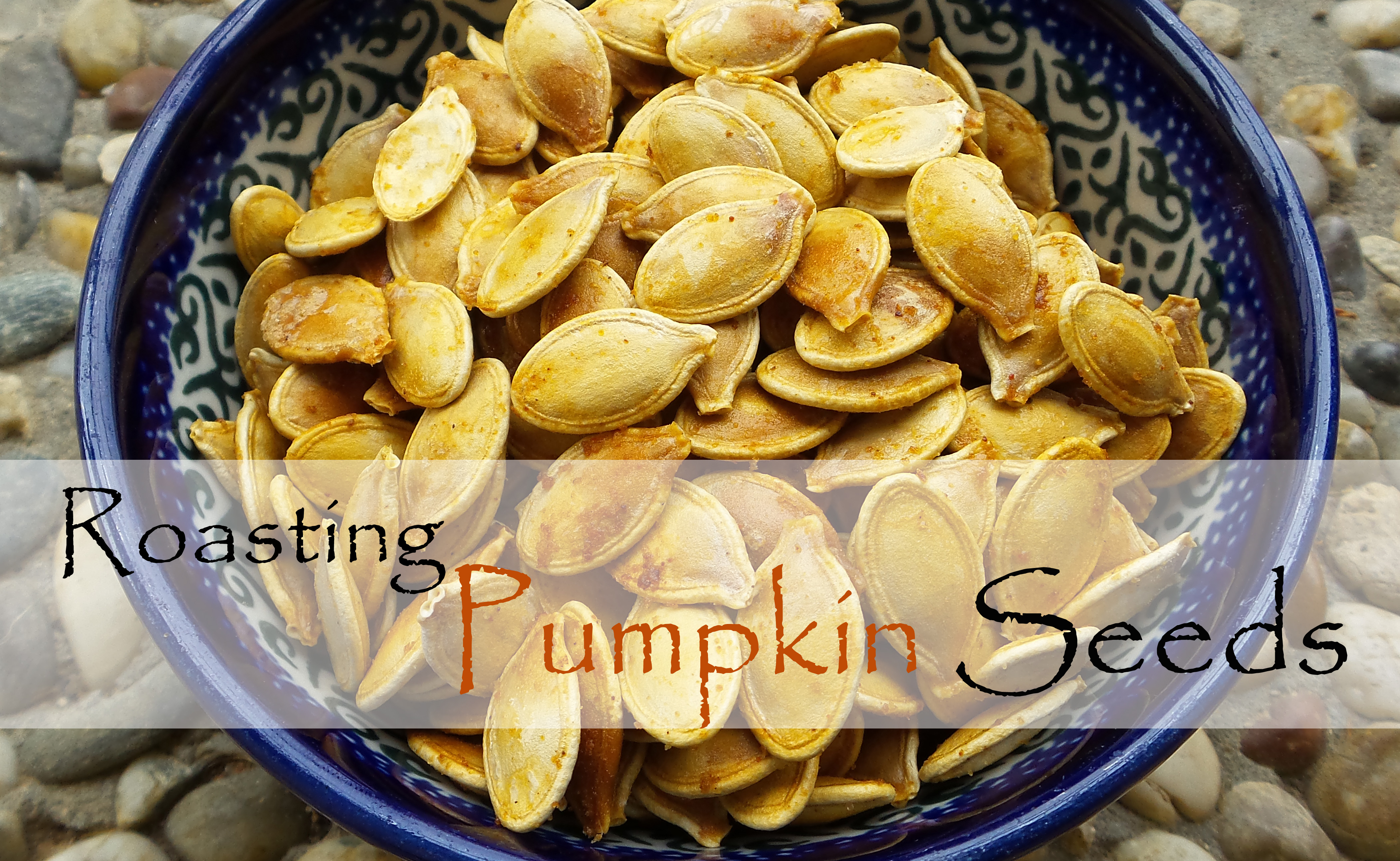 How to Roast Pumpkin Seeds (free printable recipe) | The Well Tended ...